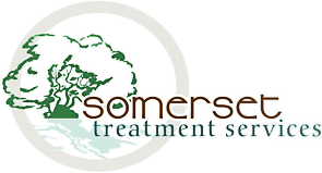 Somerset Treatment Services